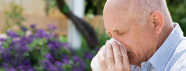 Allergies-and-Sensitivities